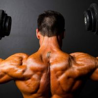 Anabolics Steroids, Healthy proteins - What Do They Mean?